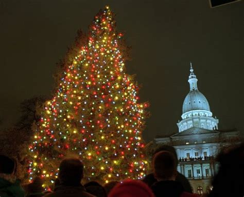 real christmas tree grand rapids mi michigan s official tree is 50 foot blue spruce from sault ste mlive