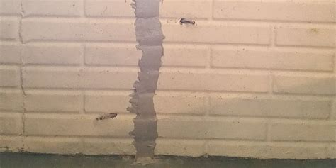 absolutely basement waterproofing cracked walls absolutely basement waterproofing