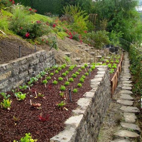 best 25 hill garden ideas on pinterest sloping garden