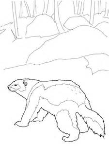 wolverine animal easy coloring pages