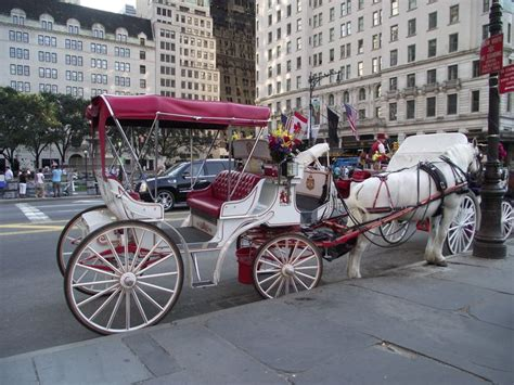 singles boat ride nyc 20 best carriage ride in central park beautiful