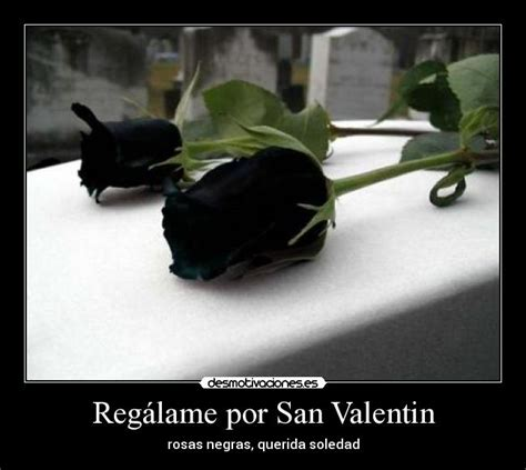 imagenes de rosas por san valentin reg 225 lame por san valentin desmotivaciones