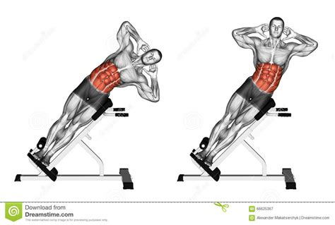 side bench exercise exercising side bend on bench stock illustration