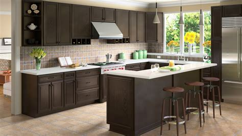 granite kitchen cabinets be brave to apply espresso kitchen cabinets with granite