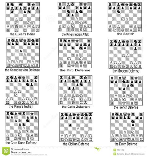 collection of chess openings stock photography image 14511052