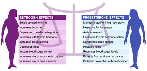 feminizing effects of progesterone in men ehow 5 factors that make weight loss impossible and how to fix