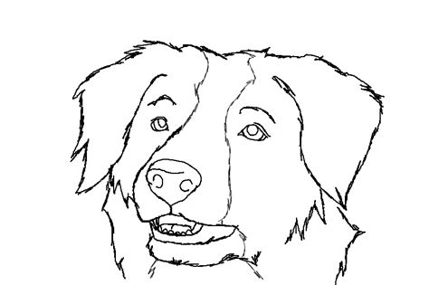 coloring page border collie border collie free lineart by luchinfakes on deviantart