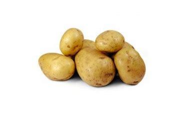 de nieuwe keuken aardappel biologische aardappelen carolus vrij kruimig de nieuwe