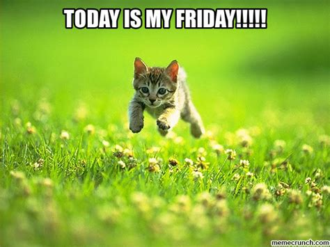 Today Is Friday Meme - today is my friday