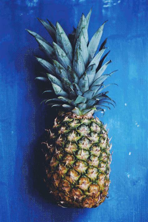 Ananas Pineapple Meme - the gallery for gt spongebob rainbow meme