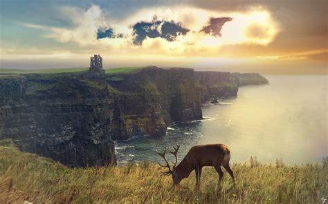 deer landscapes http nyclaudiotesta deviantart scotland