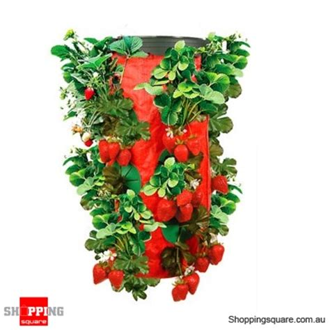 upside down strawberry planter online shopping
