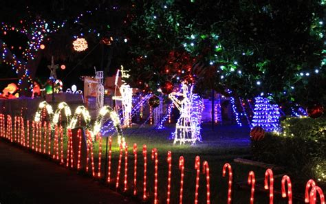 holiday lights the best in ta bay this season