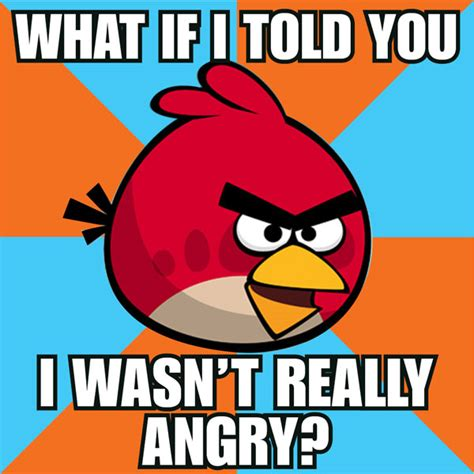Angry Birds Meme - real life angry birds meme quickmeme memes