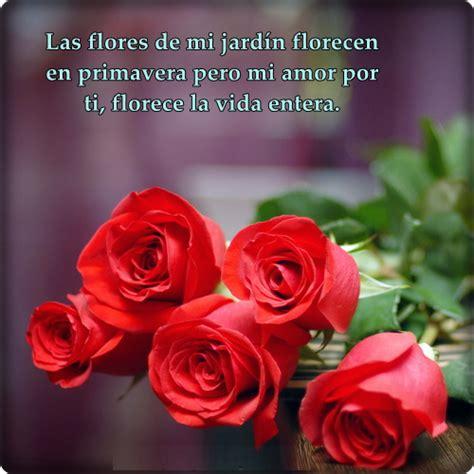 imagenes de rosas con frases de amor y amistad im 225 genes de amor con frases besos y rosas para tu novi