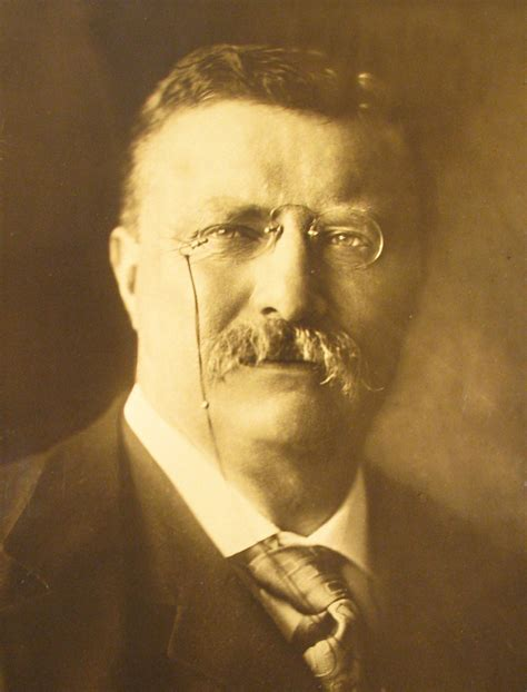 presidency of theodore roosevelt wikipedia the free theodore roosevelt 1904 jpg wikipedia the free