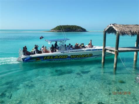speed boat bahamas swimming with the pigs picture of exuma water tours