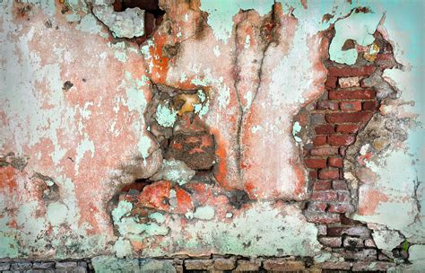 How To Paint A Mural On A Wall free images tree abstract wood texture wall color