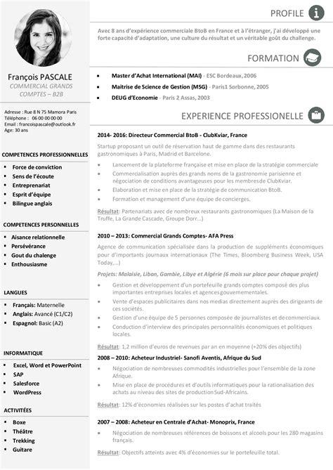 resume sales director