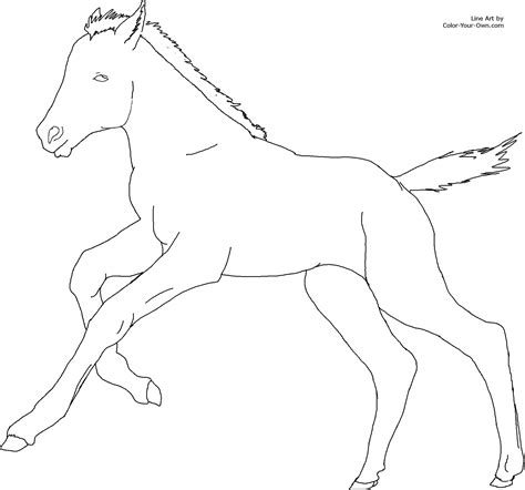 coloring pages of horses and foals cantering foal coloring page