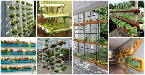 Vertical Garden Accessories Vertical Garden Ideas That Will Spice Up Your Garden