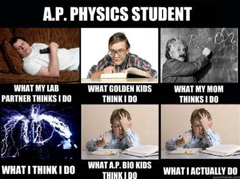 Funny Physics Memes - a p physics student what my lab partner thinks i do what