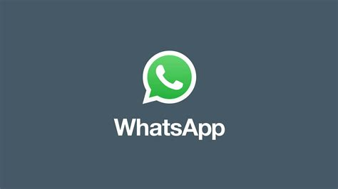 whatsapp app tutorial whatsapp officially launches app profiles for businesses