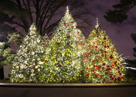 7 christmas trees to see in new york city the rockettes