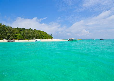 best speed boat tour to phi phi island phi phi island tours day tours speed boat phuket