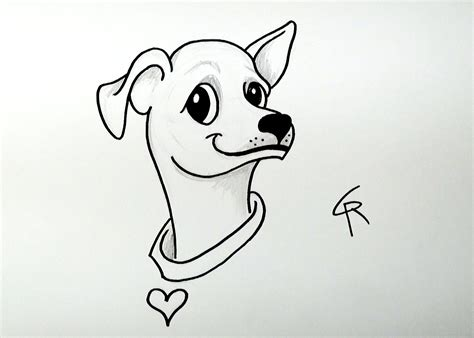 how to a chihuahua learn how to draw a chihuahua icanhazdraw icanhazdraw lessons