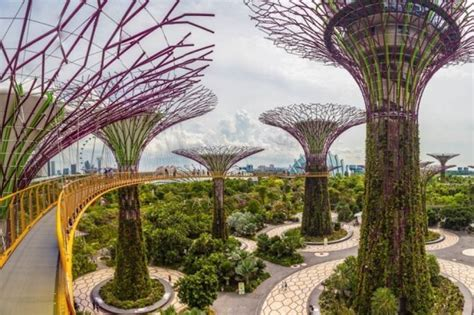 gardens   bay  avatar world  singapore world