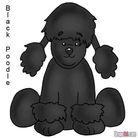 how to a poodle how to draw a black poodle step by step webkinz draw characters