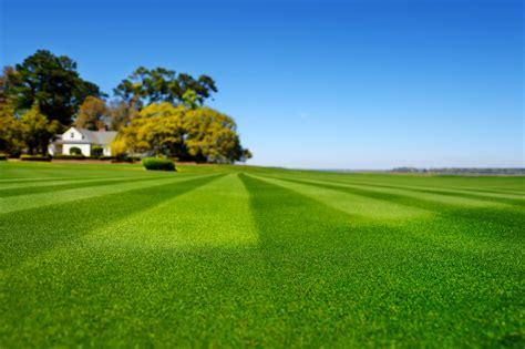 mow stripes   lawn espoma