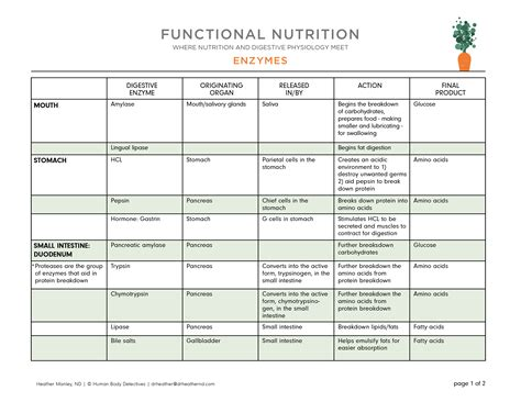 digestive enzymes and their functions table your functional nutrition live class