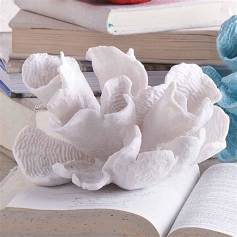 White Coral Home Decor by White Flower Coral At Seasideinspired Com Beach Ocean Home
