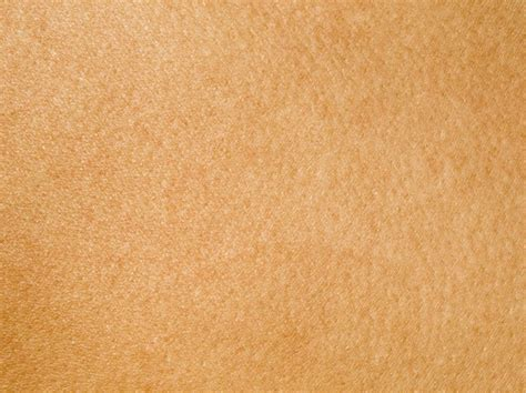 has skin skin texture www pixshark images galleries with a bite