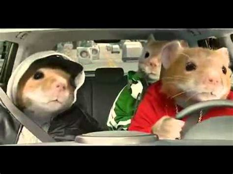 Hamster Kia Commercial 2012 Kia Soul Hamster Commercial Black Sheep Kia Hamsters