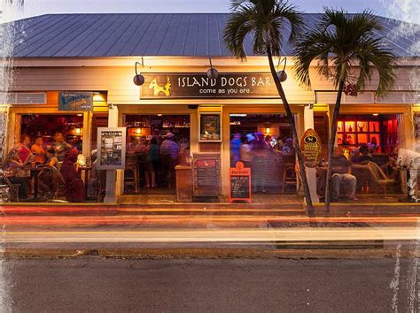 top dog bar top dog bar nj key west bars island dogs rated among the