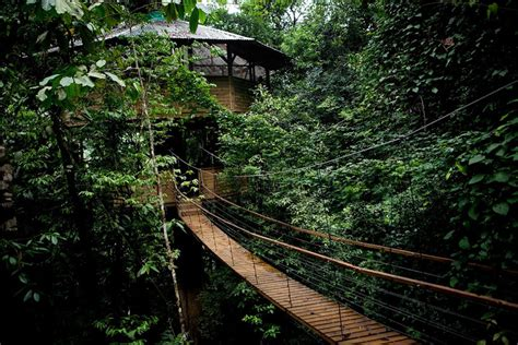 Interior Designs For A Relaxing Home by Sustainable Treehouse Community In Costa Rican Jungle