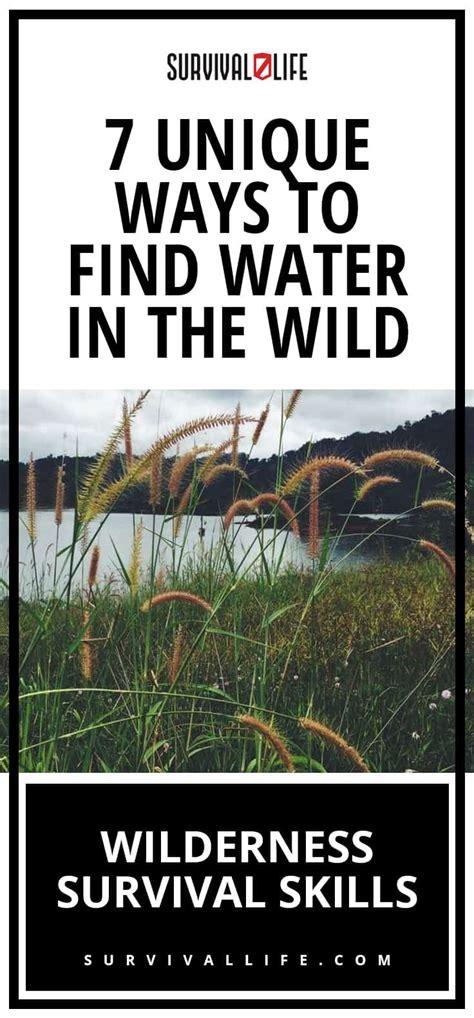 7 Uncommon Ways To Find A by Wilderness Survival Skills 7 Unique Ways To Find Water