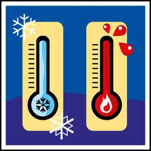 Tempature In The Importance Of Temperature For Optimal Cell Health And