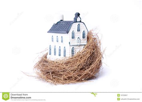 bird nest and house real estate economy royalty free