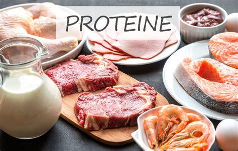 proteine quali alimenti proteine cosa sono a cosa servono e in quali