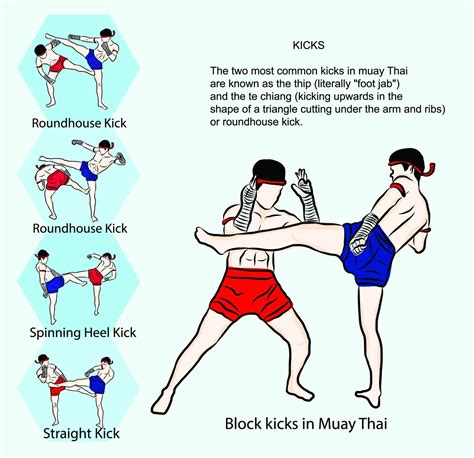 muay thai workout at home pdf workout schedule