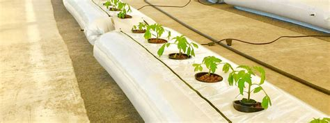british engineers hydroponic food system  disaster