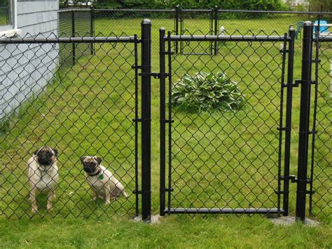 unique front yard chain link fences dog fence beverly