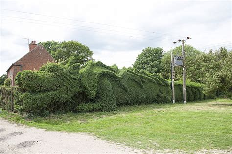 hedge topiary elderly gardener spent the last 13 years turning his 150