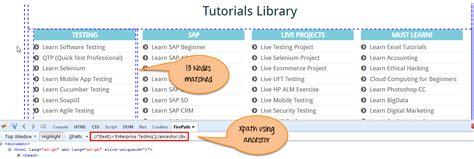 selenium xpath pattern xpath in selenium webdriver complete tutorial