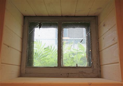 basement window to provide an attractive view and allow