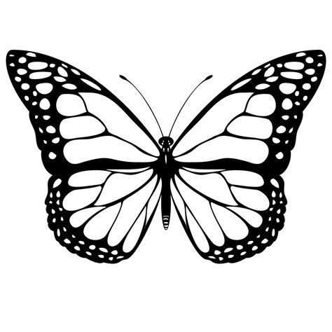 cool butterfly coloring pages cool butterfly drawings clipart best